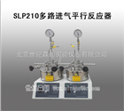 SLP210多路进气平行反应器