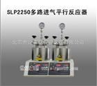 SLP2250多路进气平行反应器
