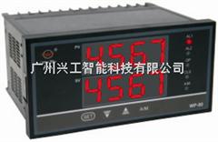 WP-D823-011-0808-HLHL-P双路数显表