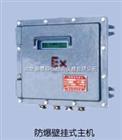 超声波流量计TDS-100F2-C
