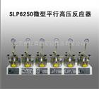 SLP6250微型平行高压反应器