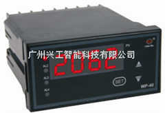 WP-Z403-02-12-HL-P数显仪