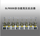 SLP8500多功能高压反应器