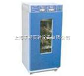LHS-250HC-I恒温恒湿箱