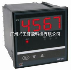 WP-C903-01-04-HL数显仪