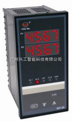 WP-DS403-02-09-HH-W数显仪