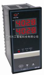 WP-S823-022-2323-2H2L-2P双路数显表