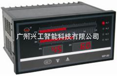 WP-TX803-02-12-HL-P-T数显仪