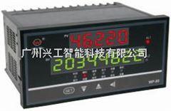 WP-L804-20-AAG-NN-2P智能流量积算仪