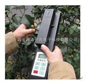 便携式叶面积测定仪/叶面积测量仪/植物叶面积仪/叶面积扫描仪