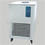 DHJF-1005低温恒温槽