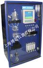 在线磷酸盐表,工业磷表,磷酸盐在线监测仪