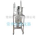 S212B-20A玻璃反应器|玻璃反应釜价格
