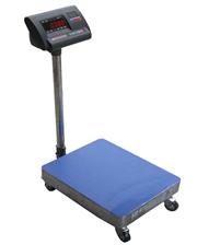 TZH-G500公斤可移动电子台秤