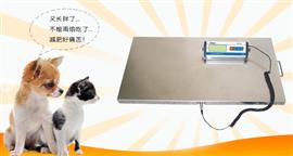 50公斤寵物電子秤