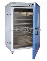 立式恒温鼓风干燥箱 DHG-9100A