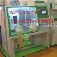 YQX-T大屏幕真彩触摸屏厌氧培养箱