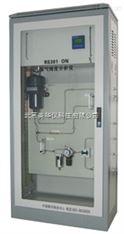 热导式氢气纯度分析仪/