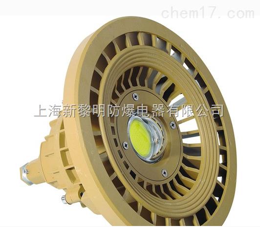 免维护节能LED防爆投光灯