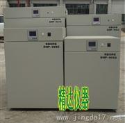 实验室DHP-9162B电热恒温培养箱