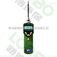 PGM-7300青岛路博美国RAE华瑞PGM-7300VOC检测仪