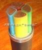 天津小猫牌ZRYJV阻燃电力电缆YJV22铠装电力电缆