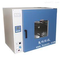 杭州精密型电热恒温鼓风干燥箱