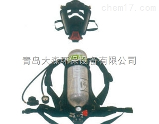 BD2100标准型呼吸器