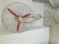 500 600 750防爆摇头扇FB/BTS电风扇220/380V带调速器