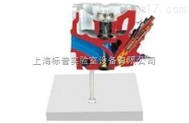 带涡流燃烧室的气缸盖解剖模型|汽车解剖实训装置