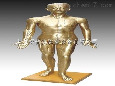 人体针灸铜人 178CM(青铜色)|中医专科训练模型