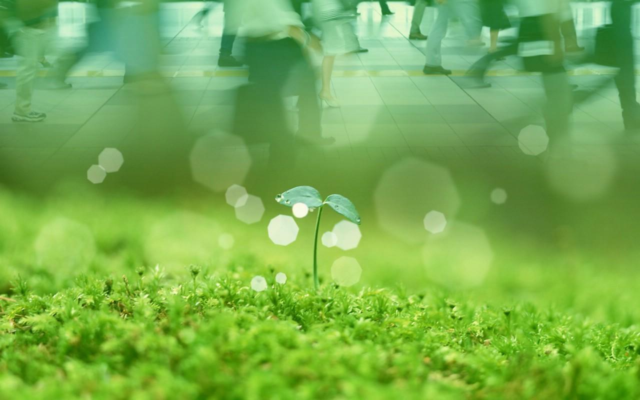 上海审议《上海市环境保护条例(修订草案)》