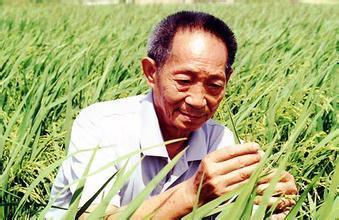 3.69亿!发改委同意杂交水稻工程及仪器设备购置项目