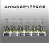 SLP6250多路进气平行反应器