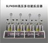 SLP4500高压多功能反应器