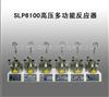 SLP6100高压多功能反应器