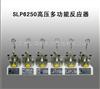 SLP6250高压多功能反应器