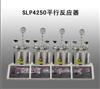 SLP4250平行反应器