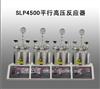 SLP4500平行高压反应器