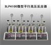 SLP4100微型平行高压反应器