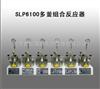SLP6100多釜组合反应器