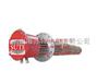ST1049集束式电加热器ST1049