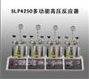 SLP4250多功能高压反应器