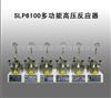 SLP6100多功能高压反应器