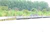 SCS工厂/40T卡车磅秤,上海过车磅