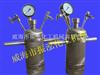 2升合成反应器