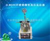 SLM500不锈钢微型高压反应器