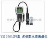 YSI556MPS多参数水质测定仪