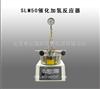 SLM50催化加氢反应器