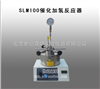 SLM100催化加氢反应器